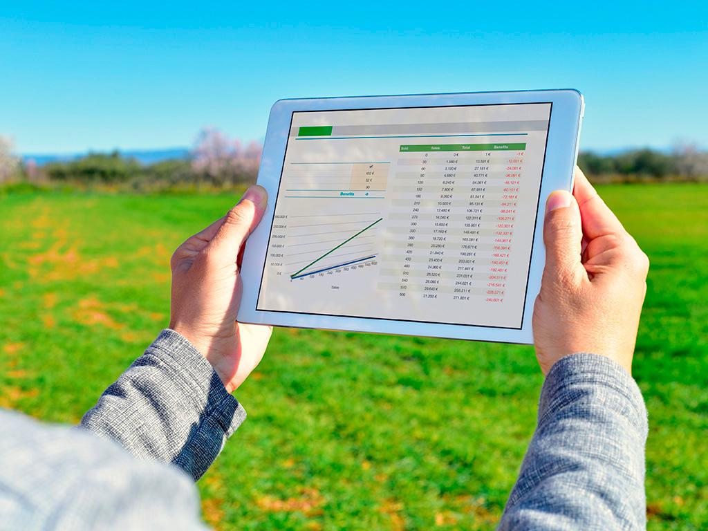 Calendário Agrícola. Como planejar plantio e colheita