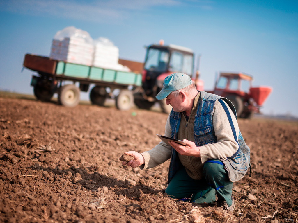 Benefícios do sulfato de cálcio para o solo