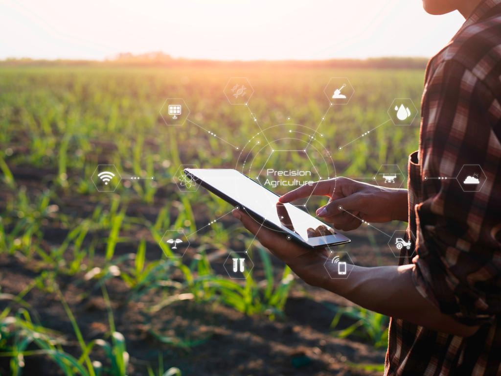 Agricultura de Precisão na produção de cana