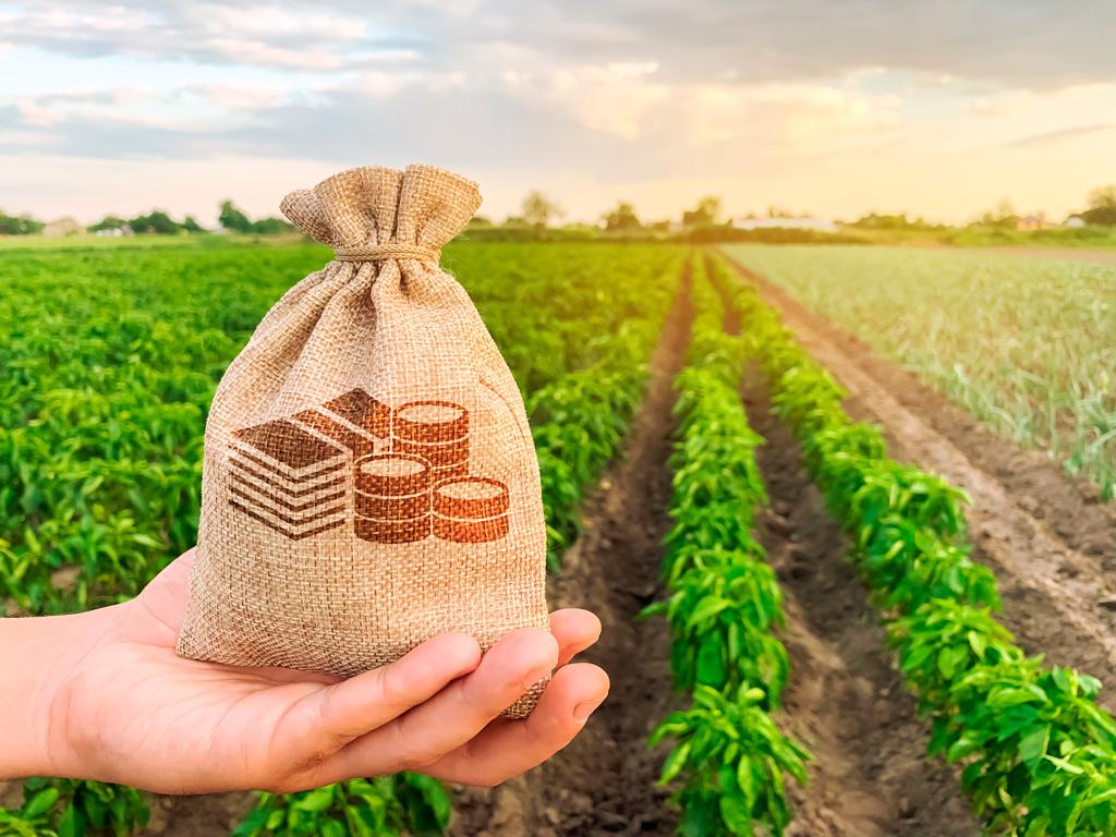 VBP - Valor Bruto da Agropecuária