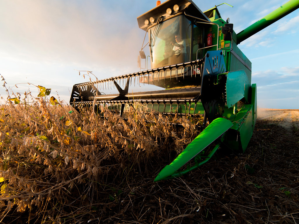 Colheita de soja 2020