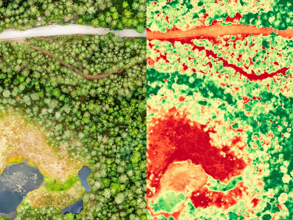 Imagens de satélite NDVI na agricultura: Veja os benefícios