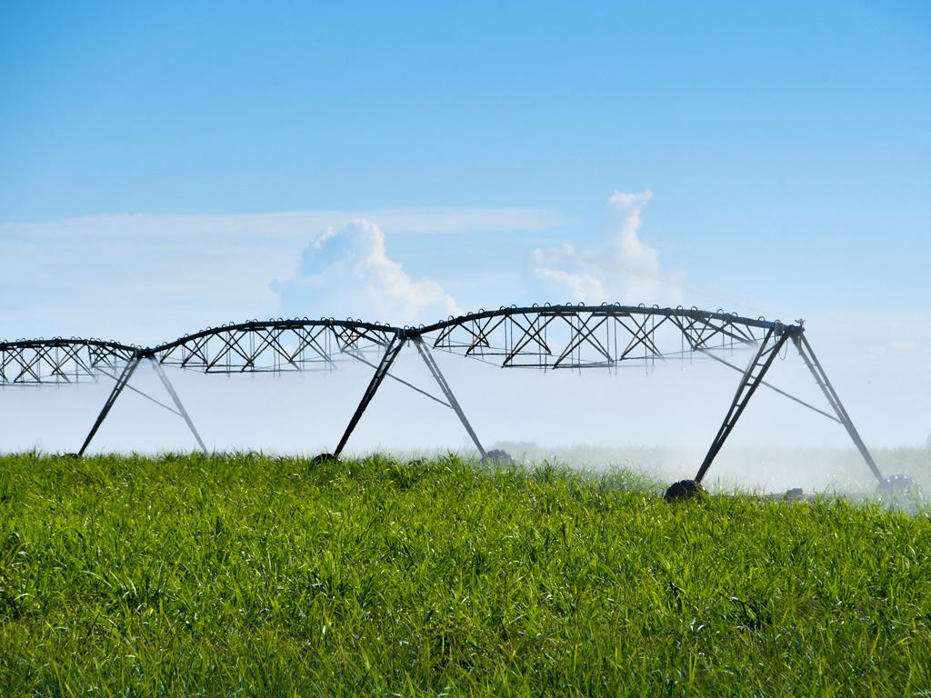 Sistema de Irrigação. Tipos e vantagens para os canaviais