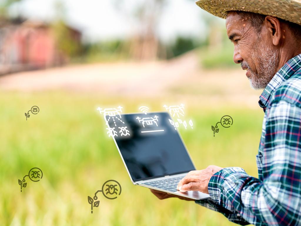 Planejamento e gestão de inseticidas na cultura de grãos