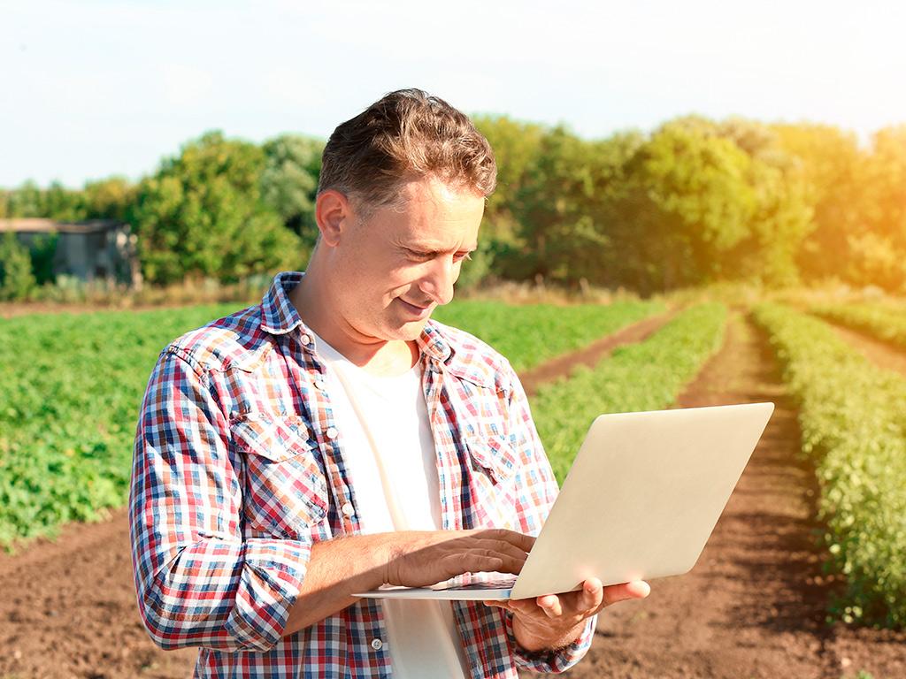 Agricultura 4.0 e Softwares para o Agronegócio