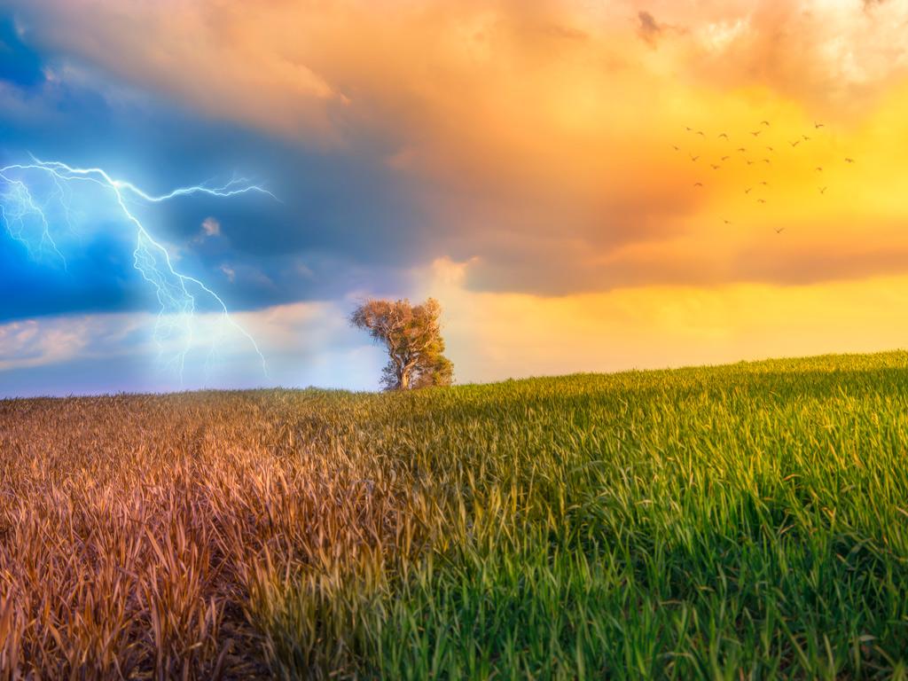 Previsão do tempo para hoje: Um dos temas mais pesquisados