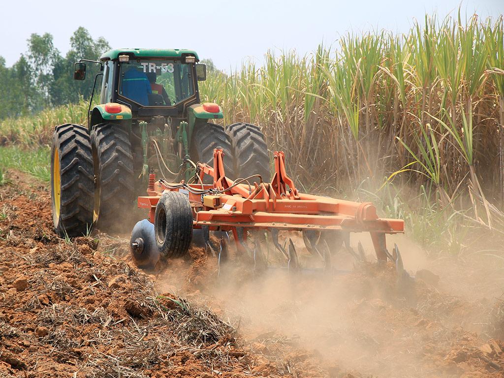 Preparo e Manejo do Solo no cultivo da Cana-de-Açúcar