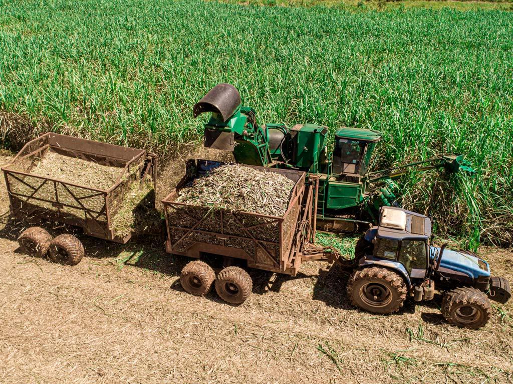 Máquinas e Implementos Agrícolas na colheita da cana-de-açúcar