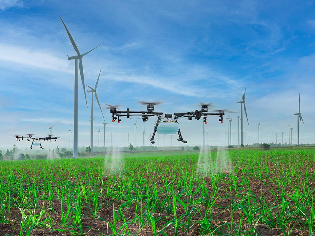 Adubação e Irrigação 4.0 no cultivo da Cana-de-Açúcar