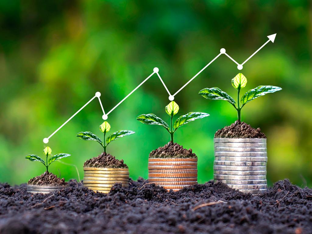 PIB e Crescimento do Agronegócio em 2021