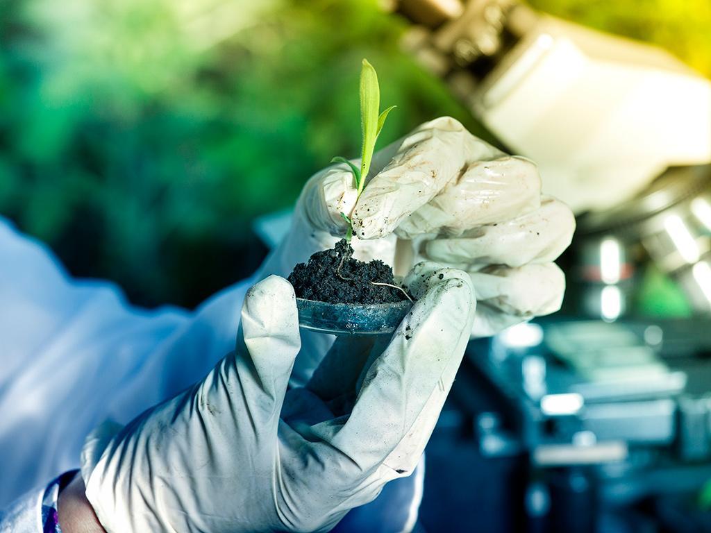 Bioinsumos: o que são e quais as vantagens para o agronegócio