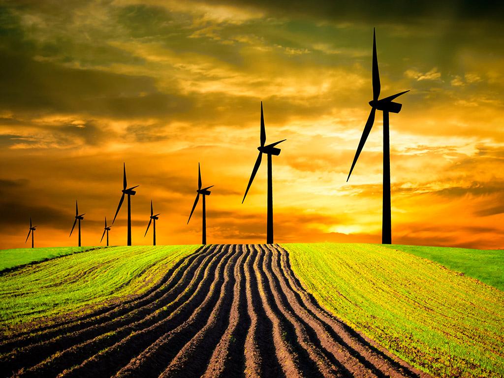 Como aumentar o lucro da fazenda com práticas sustentáveis