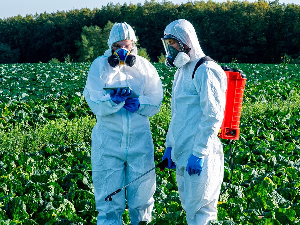 Controle de pragas e doenças no Agro 4.0