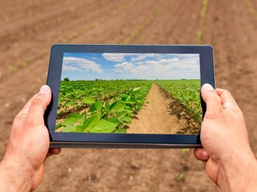 Agricultura de Precisão e Soja: Tecnologias mais indicadas