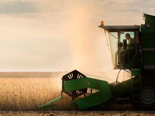 Colheita da Soja: Passo a passo para a melhor produtividade