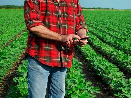 Custo Agrícola em Fazendas de Soja: Máquinas e Mão de Obra