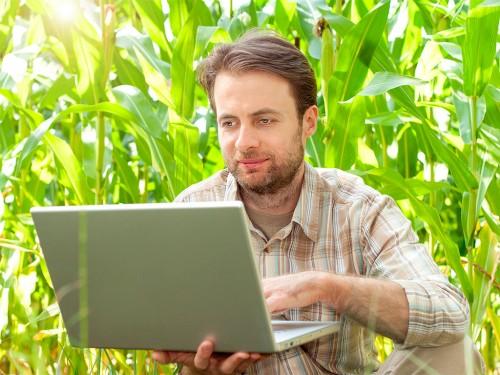 Contabilidade Rural: O que você precisa saber