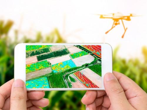 Mapas de Altimetria: Por que utilizá-los na fazenda?