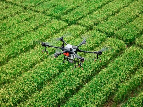 O que é NDRE e a sua aplicação na agricultura