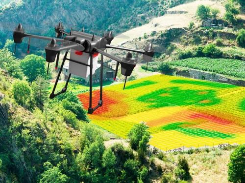 NDVI: o que é e como usar para beneficiar a sua fazenda