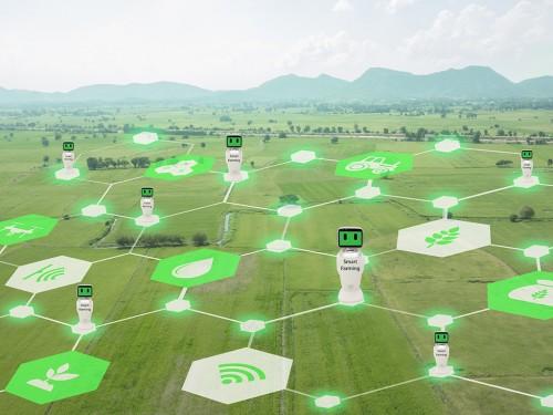 Como utilizar dados de sensoriamento na agricultura