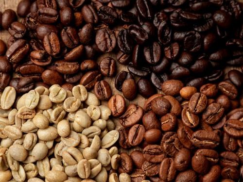 Arábica e Robusta: Tudo sobre os principais tipos de café