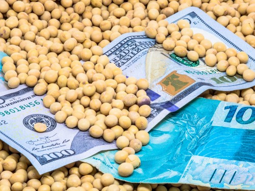 Produtores já estão vendendo a soja que será colhida em 2022